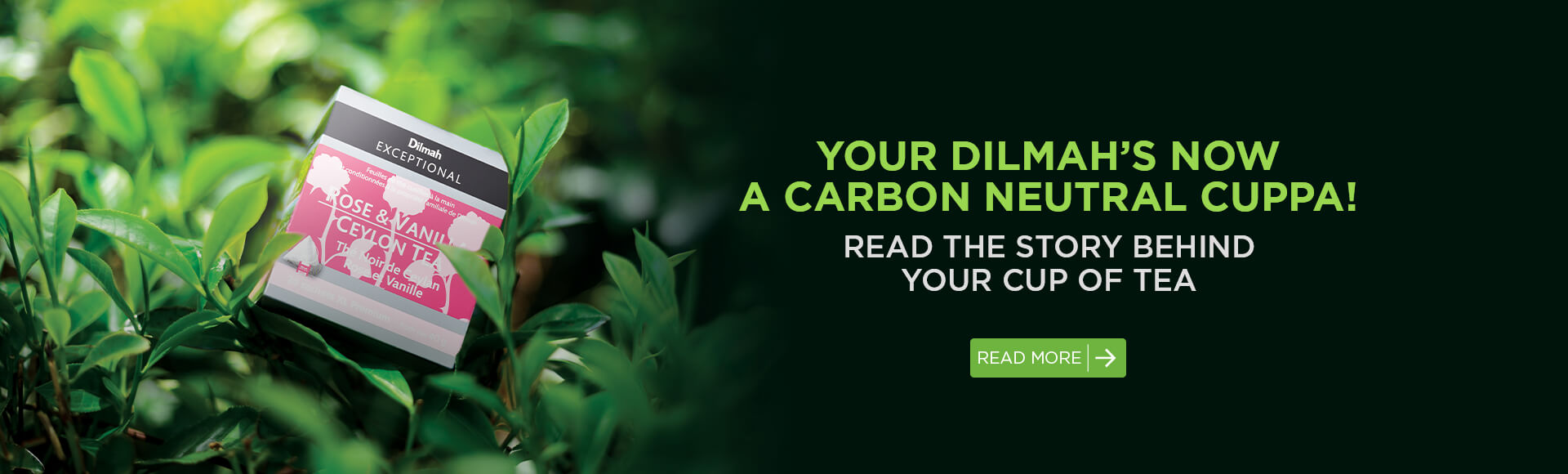 Dilmah carbon neutral book banner